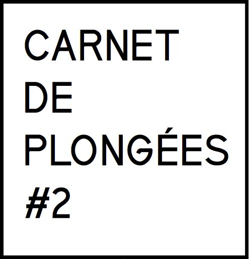 Carnet de plongée # 2