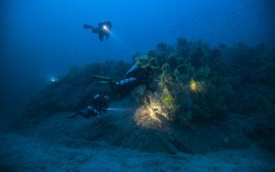 Kraken Plongée x Palmes Beach Menton