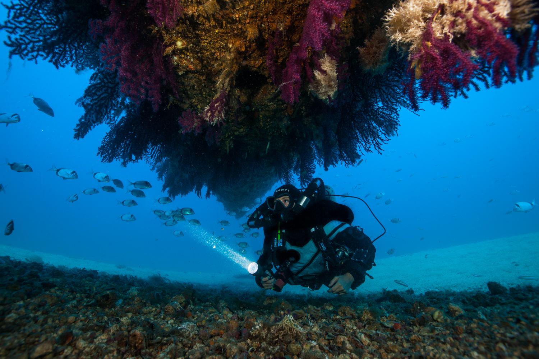 Kraken plongée explorations